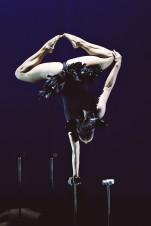 recirquel-acrobata-femenina